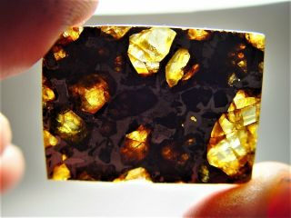 Museum Quality Crystals Brahin Pallasite Meteorite 9.  1 Gms