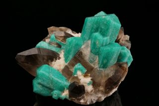 EXTRAORDINARY Amazonite & Smoky Quartz Crystal Cluster YUCCA HILL,  COLORADO 11