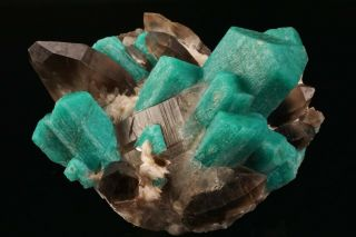 EXTRAORDINARY Amazonite & Smoky Quartz Crystal Cluster YUCCA HILL,  COLORADO 12
