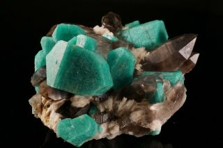 EXTRAORDINARY Amazonite & Smoky Quartz Crystal Cluster YUCCA HILL,  COLORADO 6