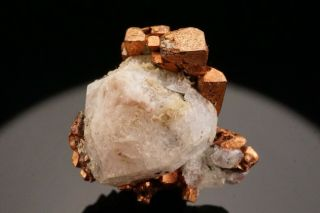 Extraordinary Cubic Native Copper & Analcime Crystal Phoenix Mine,  Michigan