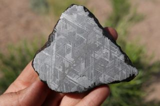 Muonionalusta Meteorite Etched Full Slice 283.  9 Grams Thick Great For Jewelry