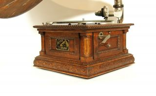 1903 Victor MS Phonograph w/Original Spear Tip Wood Horn & Stunning 6