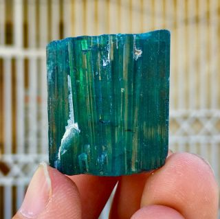 198 C.  T Top Quality Damage Terminated Indoculite Blue Tourmaline Crystal