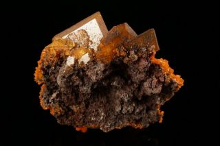AESTHETIC Wulfenite & Mimetite Crystal Cluster SAN FRANCISCO MINE,  MEXICO 9