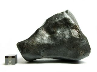 Nwa X Meteorite 427.  47g Colossal Chondrite With Character