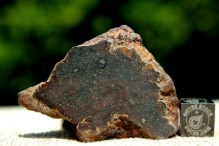 Nwa Unclassified Meteorite 41 Grams Windowed With Interesting Features