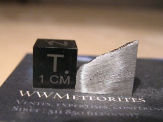 Meteorite Nwa 11106 - Iron (iab - Mg Octahedrite With Low Re,  Ir,  W And Pt Values)