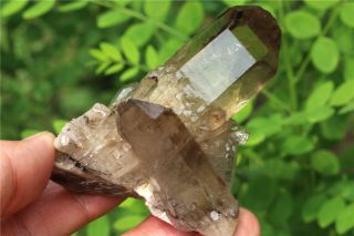 109g Naturaltibetan Skeletal Smoky Quartz Crystal Cluster Point Mineral Specimen