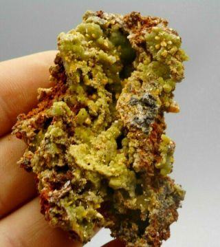 Butterscotch Wulfenite With Green Mimetite Crystal Cluster Display Specimen 017