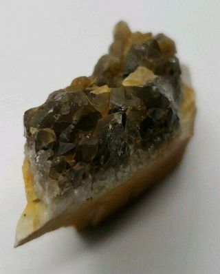 Smoky Quartz Crystal Cluster Central Ohio Flint Region 19.  4g 1x.  75x.  5