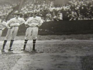 LARGE PANORAMIC 1919 BOSTON RED SOX & BALTIMORE PHOTO BABE RUTH 9