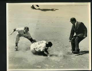 Don Buddin & Al Pilarcik 1958 Press Photo Boston Red Sox Baltimore Orioles