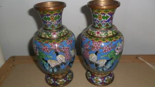 Antique Chinese Cloisonne Vase With Cranes,  19th C Early 20th Century