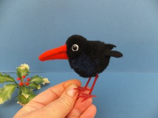Vintage German Steiff Hucky Pompom Rook Crow Black Bird Wool Woolie Bear