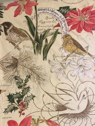 Rare Pottery Barn Amaryllis Winter Birds Queen Duvet Cover Set Organic Cotton